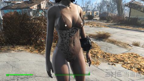 辐射4老滚5性感衣服MOD截图1