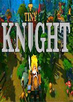 小小骑士(Tiny Knight)破解版