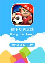 脚下功夫足球电脑版(Kung fu Feet: Ultimate Soccer)安卓修改版v1.0.11