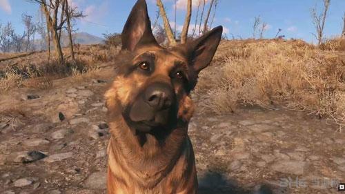 辐射4狗肉1