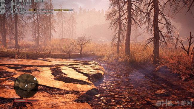 孤岛惊魂原始杀戮PC版高低画质对比3