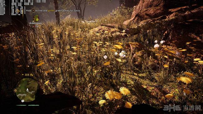 孤岛惊魂原始杀戮pc版高低画质对比