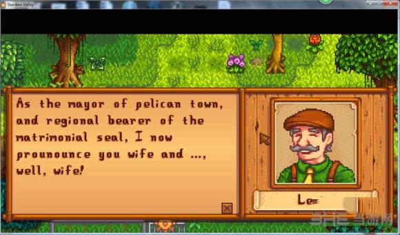 星露谷物语玩家结婚全流程心得体会分享2