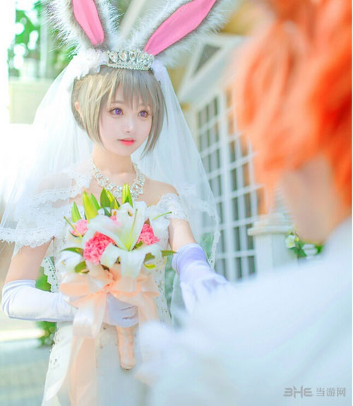 疯狂动物城婚纱照COS图2