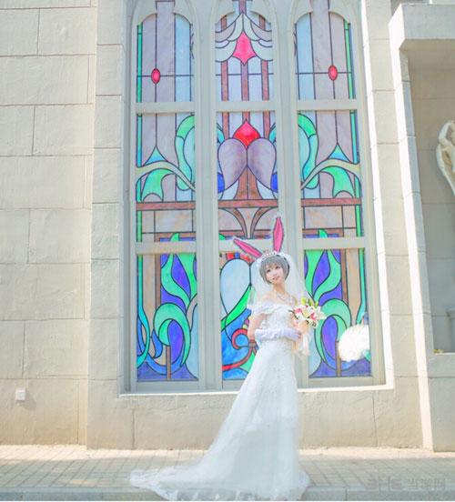 疯狂动物城婚纱照cos赏