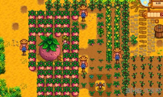 星露谷物语超大作物种植攻略介绍 怎么种植超大作物1