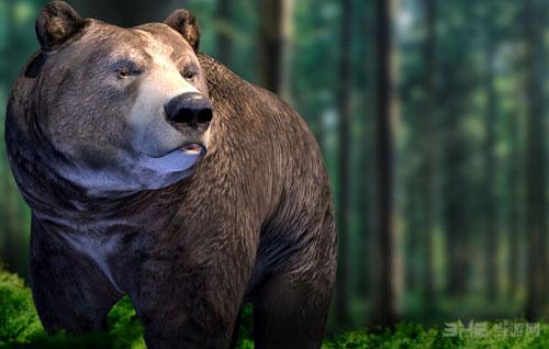 模拟狗熊截图1