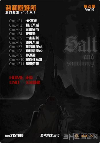 盐和避难所十项修改器截图0
