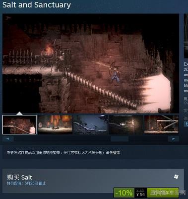 盐和避难所PC版steam截图