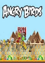 愤怒的小鸟:奇妙时空之旅硬盘版