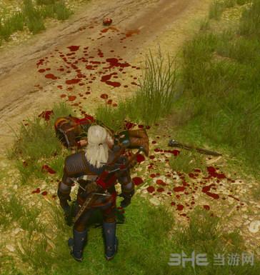 巫师3:狂猎更多的血液MOD截图0