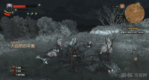 巫师3:狂猎截图6