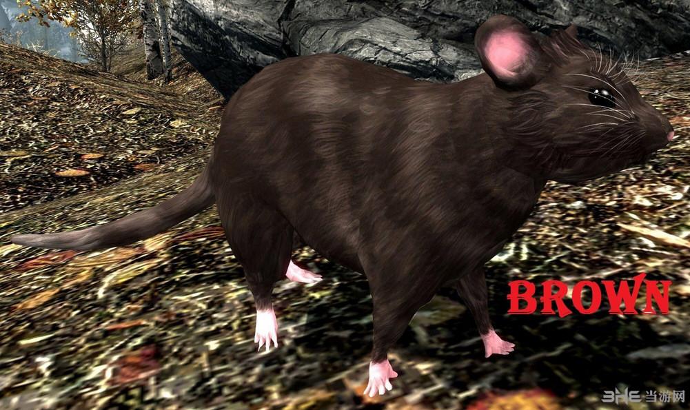 上古卷轴5天际萌萌的恶鼠(雪鼠)MOD截图1