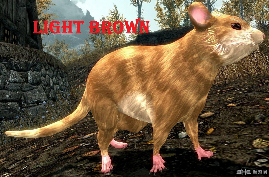 上古卷轴5天际萌萌的恶鼠(雪鼠)MOD截图4