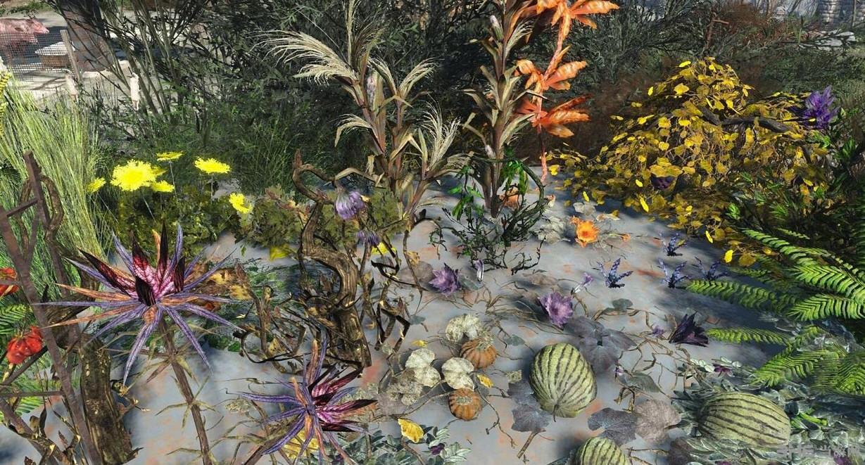 辐射4花园植物农作物种植工作台MOD截图0