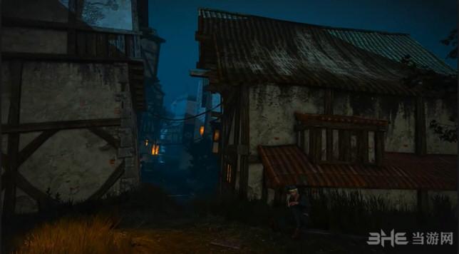 巫师3狂猎第一人称视角MOD截图2