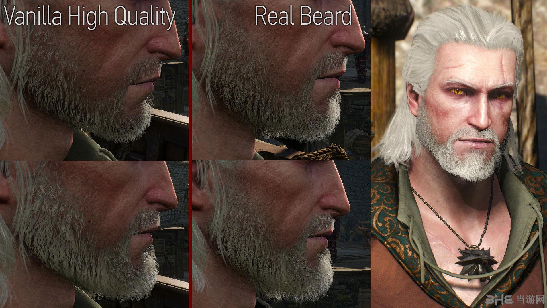 巫师3:狂猎主角杰洛特改变头发颜色MOD截图2