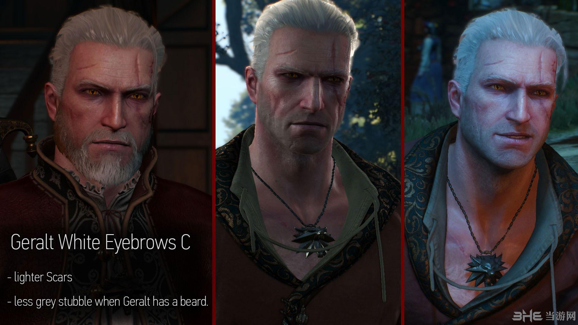 巫师3:狂猎主角杰洛特改变头发颜色MOD截图4