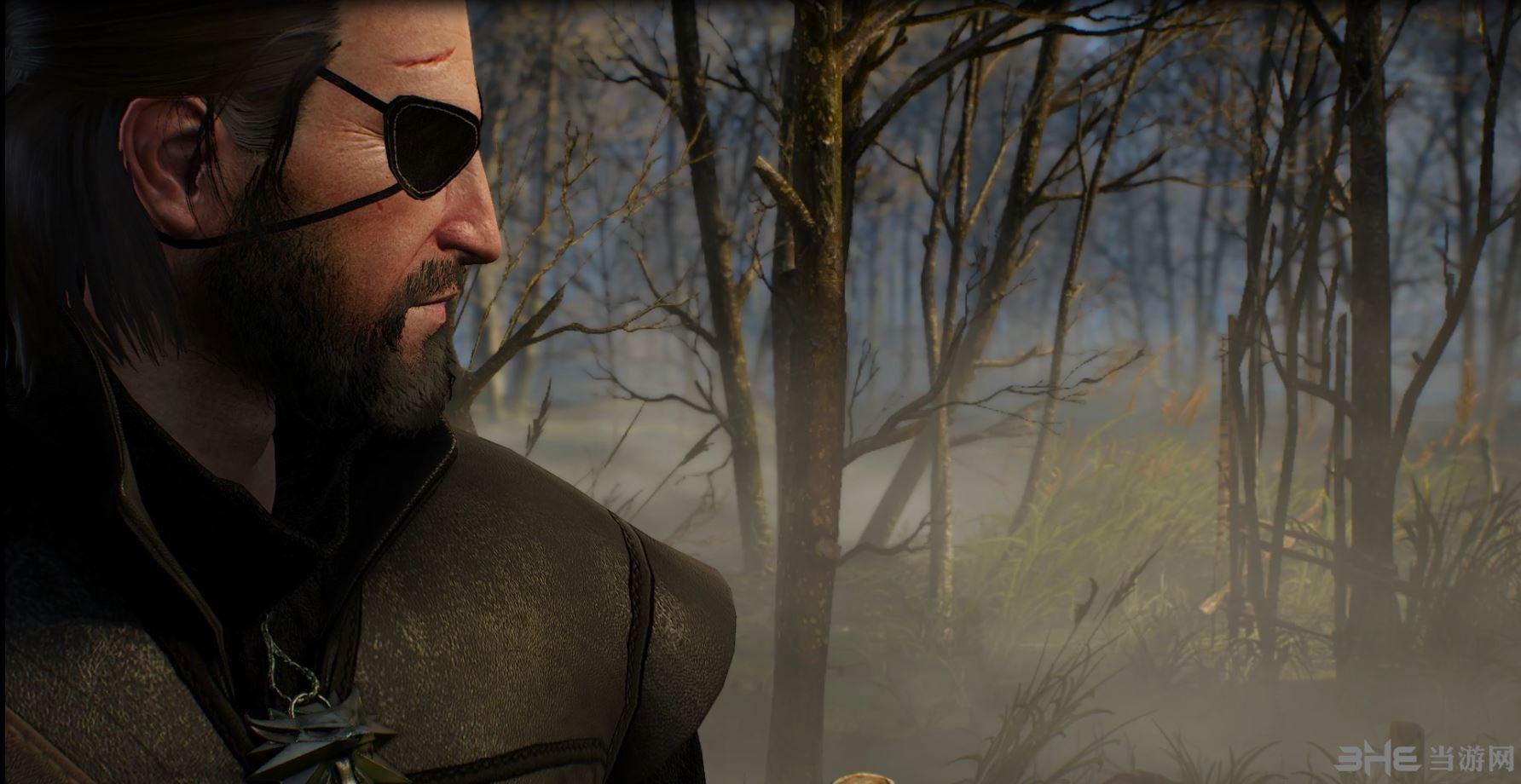 巫师3:狂猎蛇叔眼罩MOD截图1