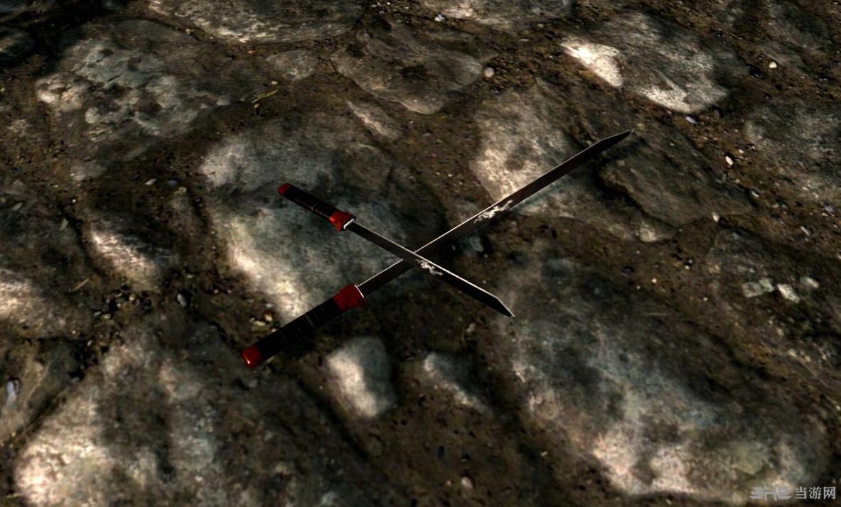 上古卷轴5天际俄网武器龙之双剑MOD截图0