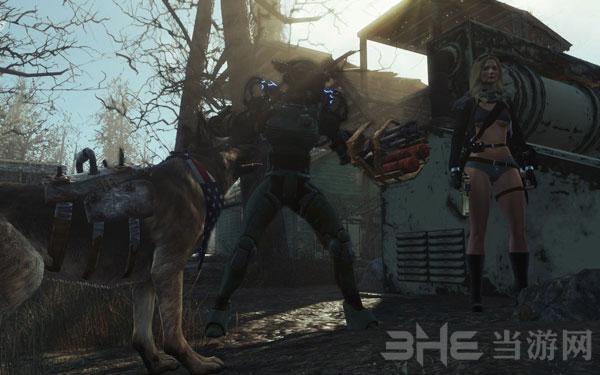 辐射4狗肉与追随者同伴一起冒险MOD截图2