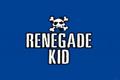 Renegade Kid游戏开发商宣布破产 曾开发《病房》系列作品