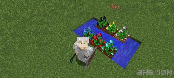 我的世界1.10.2矿石种子MOD截图4
