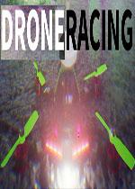 无人机竞速(Drone Racing)PC硬盘版