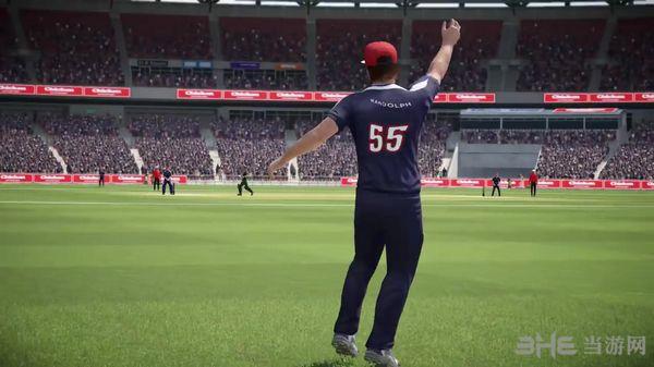 唐纳德布莱德曼板球17截图2