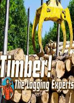 伐木工!木材专家(Timber!The Logging Experts)硬盘版