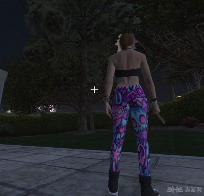 侠盗猎车手5女裤集合包MOD截图2