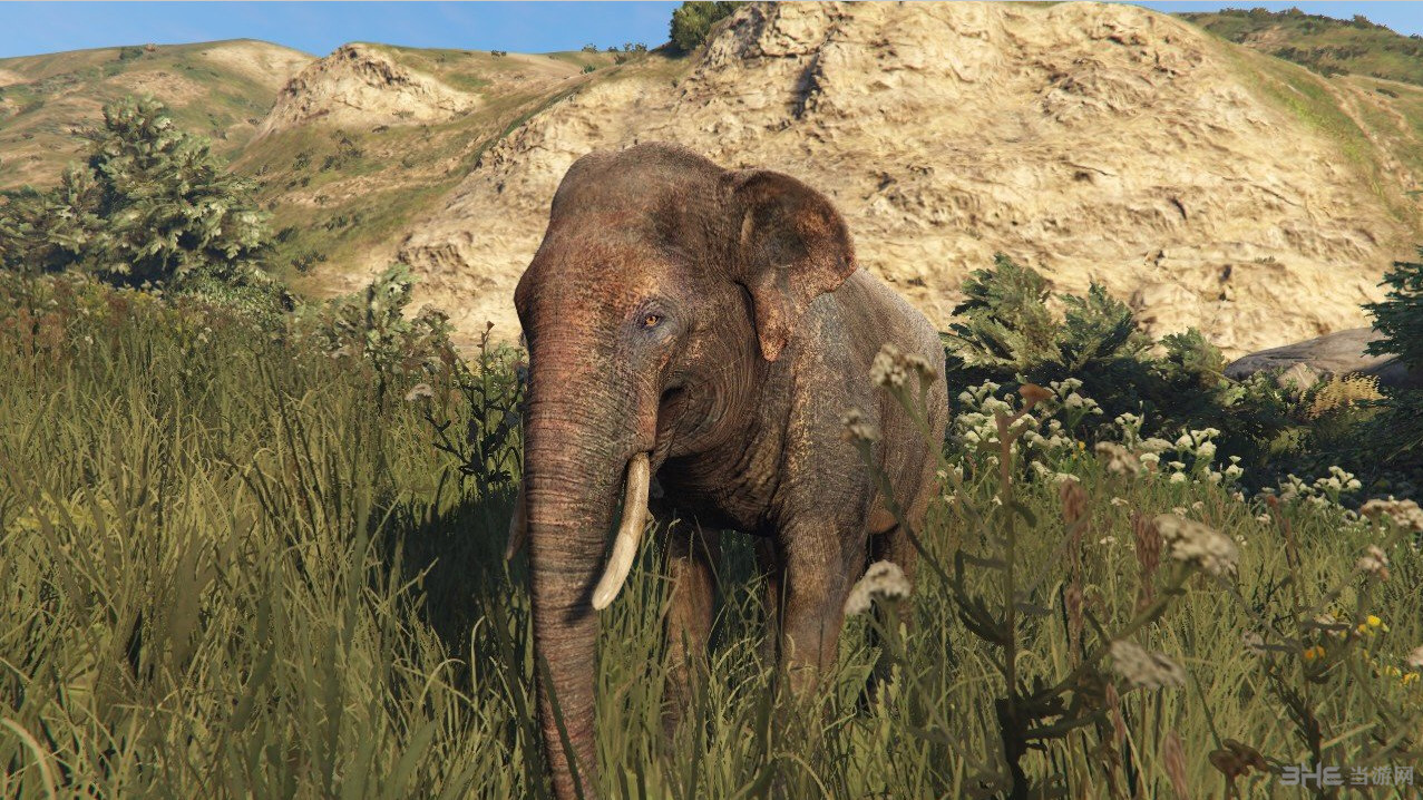 侠盗猎车手5孤岛危机中的大象MOD截图0