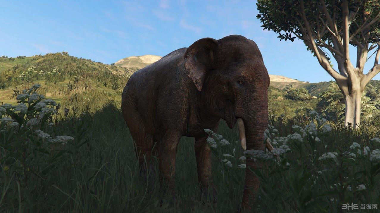 侠盗猎车手5孤岛危机中的大象MOD截图1