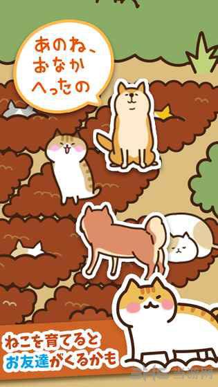 猫咪田园破解版