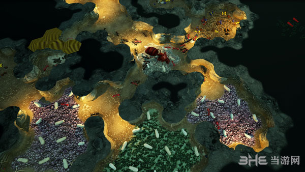 地下蚁国截图4