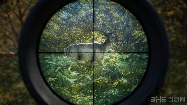 猎人:野性的呼唤截图0
