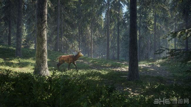 猎人:野性的呼唤截图3