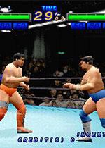 全日本职业摔跤T