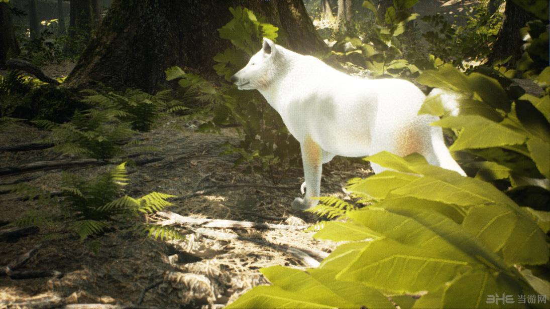 生存:动物模拟 (survivalizm - the animal simulator)pc硬盘版