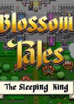 绽放传说:沉睡的国王(Blossom Tales:The Sleeping King)硬盘版