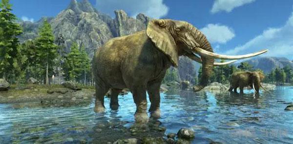 大象图片1