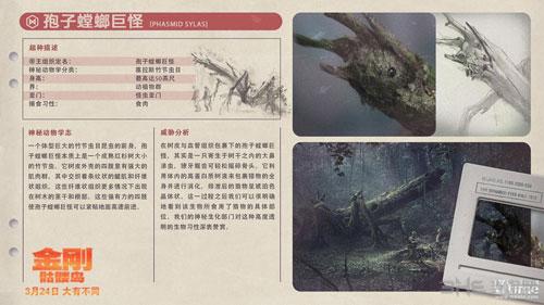 《金刚:骷髅岛》怪物图鉴3
