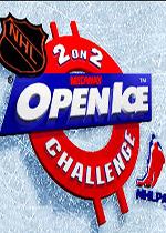 二对二双打冰上曲棍球公开赛