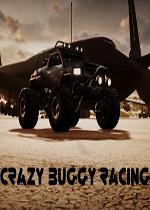 疯狂越野赛车(Crazy Buggy Racing)硬盘版