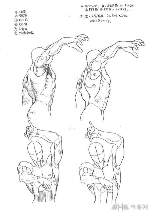 美术指导手册2