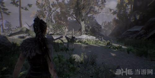 地狱之刃塞娜的献祭视频截图3