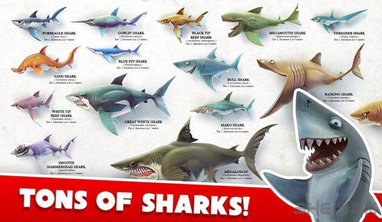 饥饿鲨:世界破解版截图3