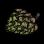 饥荒树苗图片4