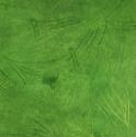 饥荒草甸草皮图片2