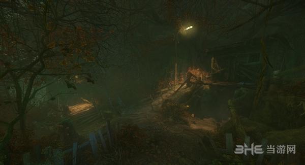 诅咒丛林截图1